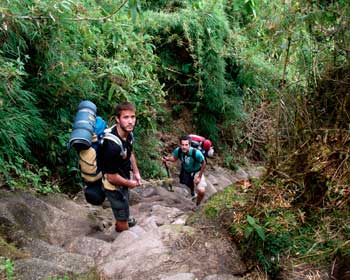 Inka jungle and machupicchu